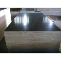 China Film Faced Waterproof Plywood wholesale