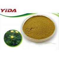 Safety Sex Steroid Hormones No Side Effect Natural Damiana Leaf Powder for sale
