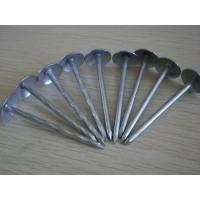 China galvanized roofing nails 1.5 2 2.5,roofing nails on sale