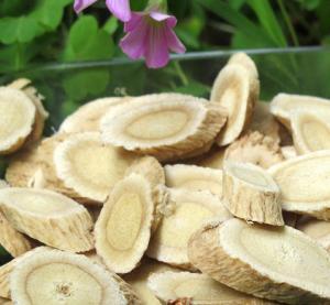 China Pure Natural Radix Astragali / Astragalus Membranaceus Chinese Herbal Supplements wholesale