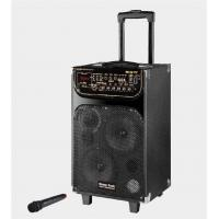 China Portable Microphone Rechargeable Trolley Speaker For Outdoor Party And Dancing wholesale