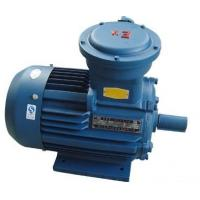 China YB2 Explosion-proof Electric Motor For Sale wholesale