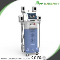 China Cryolipolysis Vaccum Body slimming machine cellulite removal belly treatment on sale