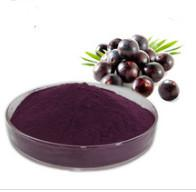 China High quality and pure acai berry brazil, acai berry bulk Acai Berry Extract on sale