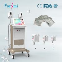 China Cryo skin cooling system cryo lipo session cryotherapy machine for sale wholesale