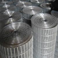 China electric galvanized welded wire mesh wholesale