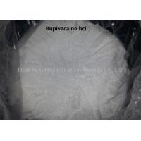 China Safety Local Anesthetic Powder Anti Paining Bupivacaine Hcl Powder CAS 14252-80-3 wholesale