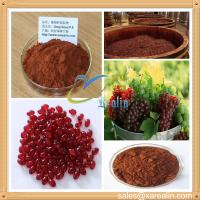 China Natural Grape Seed Extract Proanthocyanidins wholesale