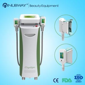 China Double Heads Portable Fat Freezing Machine Home Use Cryolipolysis body slimming machine wholesale