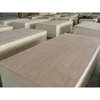 China 18mm Full Birch Plywood for Furniture Usage on sale