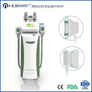 China 5 handls cryolipolysis machine/5 handle cryolipolysis/3d cryolipolysis wholesale