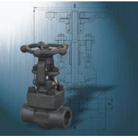 China Forged Steel Gate Valve with API 6D wholesale