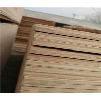 low price packing grade plywood from china