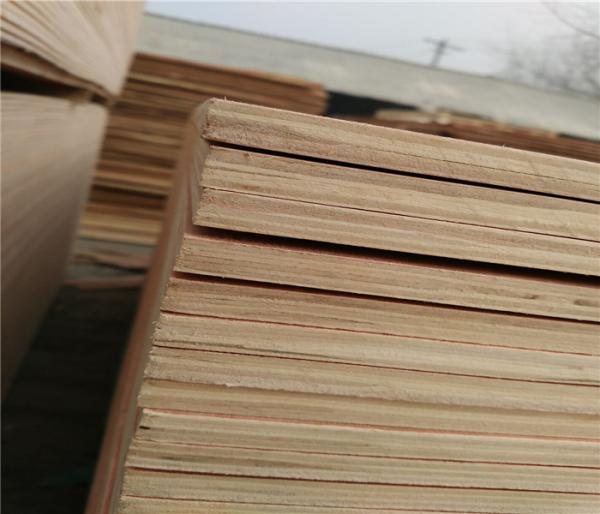 Quality low price packing grade plywood from china for sale