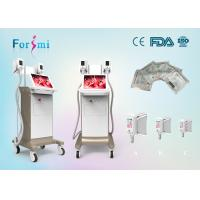 China advanced laser lipolysis laser treatment for body fat removal non surgical 15 inch screen -15 Celsius wholesale