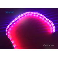 China Full color strip led 5050 waterproof IP65 flxible strip with UL listed wholesale