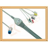 China Mindray PM5000 Patient 5 Lead Ecg Cable 12 Pin Ecg Lead Wires wholesale