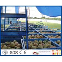 China Fresh Pineapple / Mango Juice Processing Plant With Can Packaging Machine wholesale