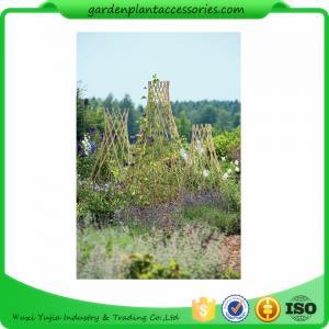 Buy cheap Прямые колья бамбука сада для толстого бамбука ограждая 40 кс 150км from wholesalers