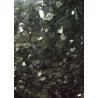 China Emerald Green / Star Green Granite Stone Floor Tiles Big Slabs Granite Tiles For Bathroom Floor wholesale