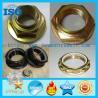 Hex Flange Type Lock Nut,Hexagonal flange nut,hex flange nylon lock nut,blue white zinc hex flange nut,nylon lock nut