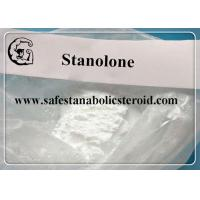 China Stanolone / Androstanolone Raw Steroid Powders for muscle mass and strength CAS 521-18-6 wholesale