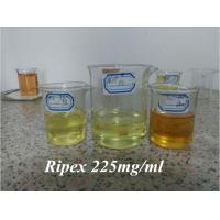 China Pharmaceutical Grade Ripex 225 Female Liquid Anabolic Steroids Muscle Gain China wholesale