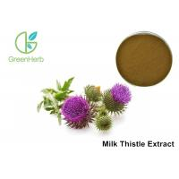 China Milk Thistle Natural Plant Extracts 80% Silymarin For Liver Protecting wholesale