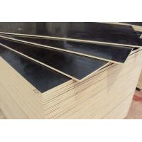 China Hardwood Construction External Ply Sheets / First Class Grade Film Faced Marine Plywood on sale