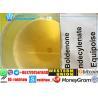 China 法的筋肉ステロイドのボルデノン Prohormone大胆なウン CAS 846-48-0 wholesale