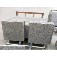 China Tiger skin white granite tiles and slab wholesale