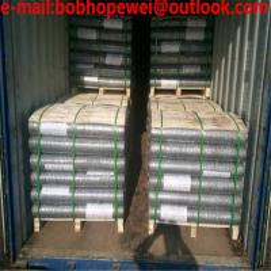 China chicken wire /hexagonal wire mesh/hex mesh /hexagonal wire netting/rabbit wire mesh/wire chicken cage/chicken wire scre wholesale