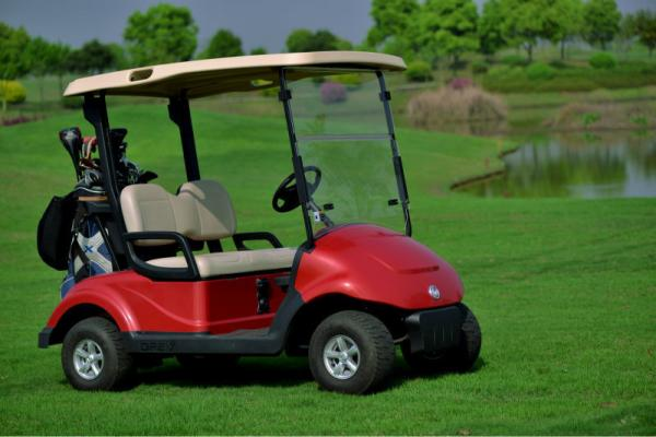 Quality EQ9022 48V 4KW 2 seats electric golf cart/club car with DC motor for sale