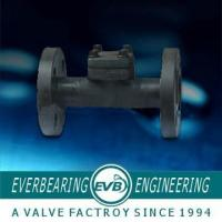 China API 602, EN ISO 15761, BS 5352 Forged Steel Check Valve wholesale