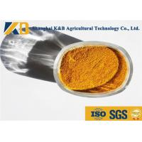 China Golden Brown Granular High Protein Powder For Animal Eating Additive wholesale