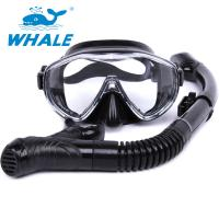 China High Performance Anti Fog Diving Snorkel Set , Diving Mask And Snorkel Sets For Men wholesale