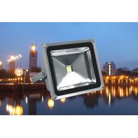 China High Power Outdoor Led Flood Light 10w - 100w White / Rgb Color for Stage wholesale