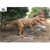 China Realistic Silicone Life Size Model Dinosaurs , Forest Dinosaur Garden Ornaments wholesale