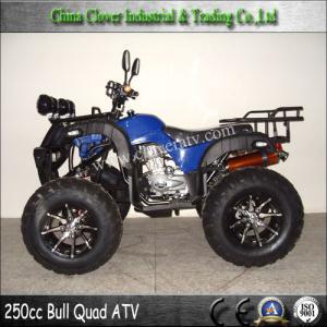 China 250CC Quad ATV Utility ATV 250cc Automatic Quad ATV Quad ATV 250 on sale