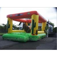 China inflatable sports wholesale