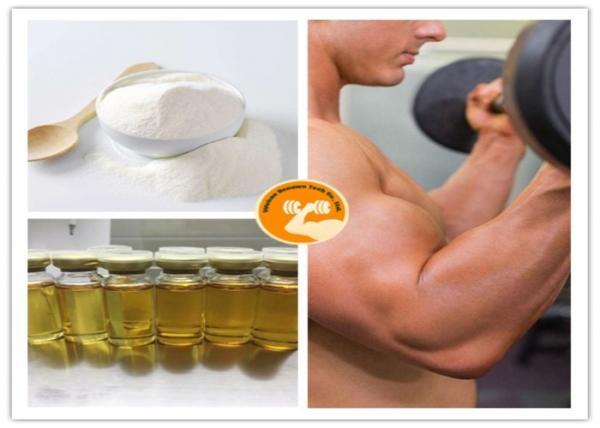 Quality 4 Chlorodehydromethyltestosterone Oral Turinabol for sale
