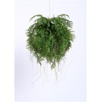 China Stylish 65CM Artificial Hanging Plants Exotic DisplayFor Harried Modern Lifestyle wholesale
