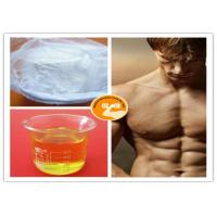 China TM Blend 500 Steroid Injection Oil Bulking / Cutting Cycle Mixed Injection Gear wholesale