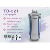 China 10.4Inch Face and Body Cryolipolysis Slimming Machine Fat Frezzing / Skin Tightening wholesale