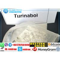 China esteroides Turinabol do crescimento do músculo 4-Chlorodehydromethyltestosterone wholesale