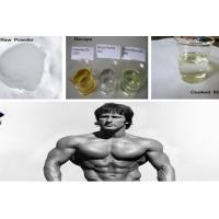 CAS 434-07-1 Muscle Gain Oral Anabolic Steroids / Anadrol Oxymetholone For Bulking Cycle