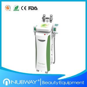 China Newest freezing off fat body fat freezing machine fat removal without surgery wholesale