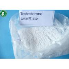 China Депо Примотестон/стероиды КАС 315-37-7 порошка Энантате тестостерона анаболитные андрогенные wholesale