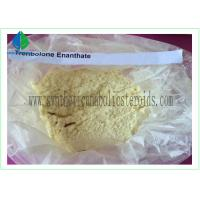 China Trenbolone Enanthate Powder CAS 10161-33-8 wholesale