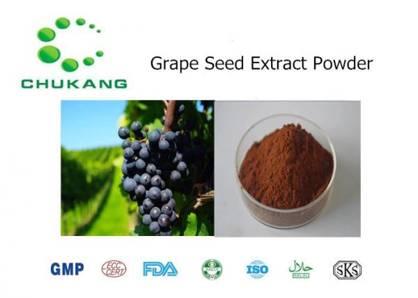 Quality Nature Plant Extract Grape Seed Extract OPC Organic Pure Heral Extract for sale